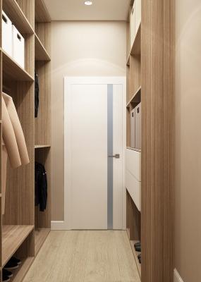 дизайн гардеробной, проект гардеробной, дизайн-проект гардеробной, хранение в гардеробе
